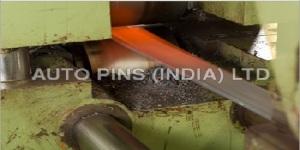 Auto Pins India Ltd.